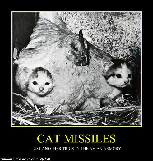 animals,armory,avian,caption,captioned,cat,chicken,demotivational,funny,missile,Photo,photograph,trick,weapon