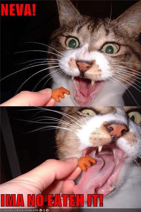 NEVA!  IMA NO EATEH IT!