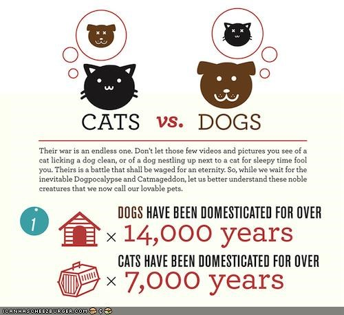 cat facts dogs infographic interesting - 4157163264