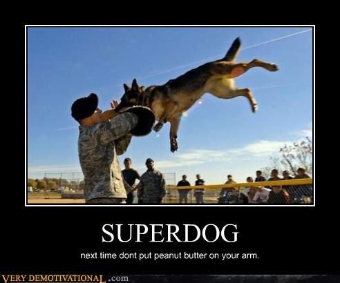 SUPERDOG next time dont put peanut butter on your arm.