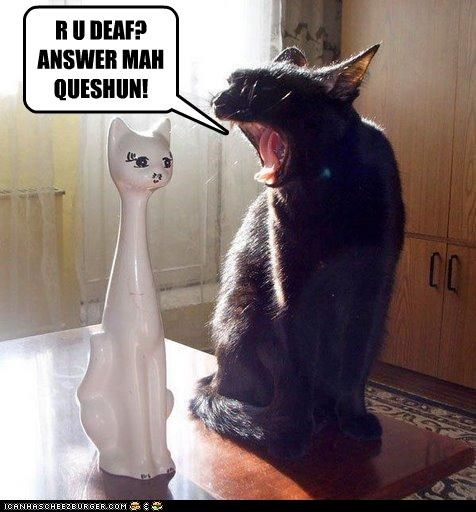 answer,are you,caption,captioned,cat,Command,deaf,question,shouting,statue,upset