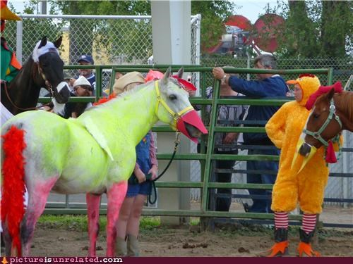 animals,clowns,costume,ducks,horses,wtf