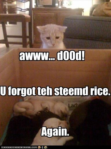 U forgot teh steemd rice. Again. awww... d00d!