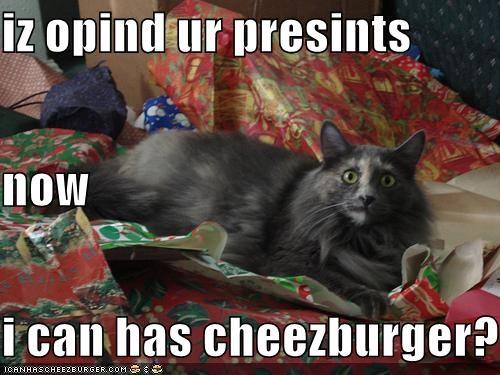 Cheezburger Image 4160253440