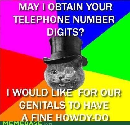 cat gentleman happycat Memes monocle top hat - 4161531136