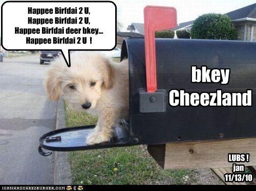 Cheezburger Image 4161884160