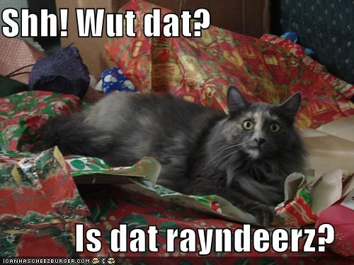 caption captioned cat christmas confused hush meowy christmas merry christmas question reindeer shh what - 4162814720