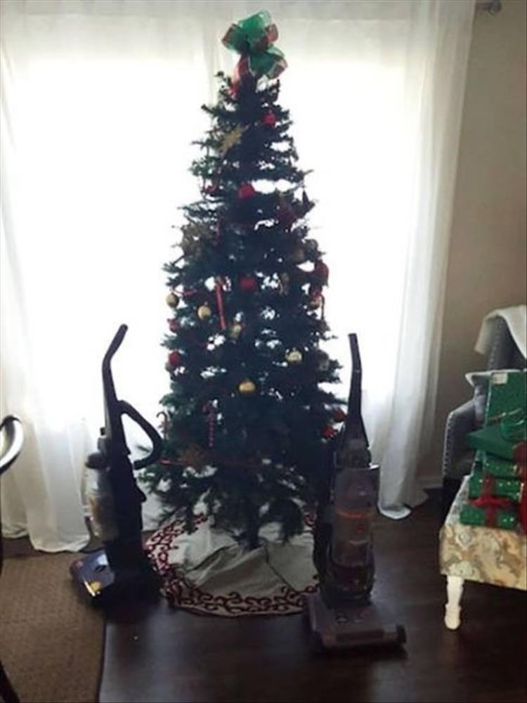 funny ways to protect your christmas tree from your pets