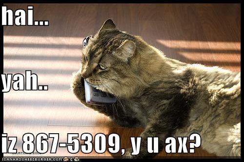 Cheezburger Image 416479488