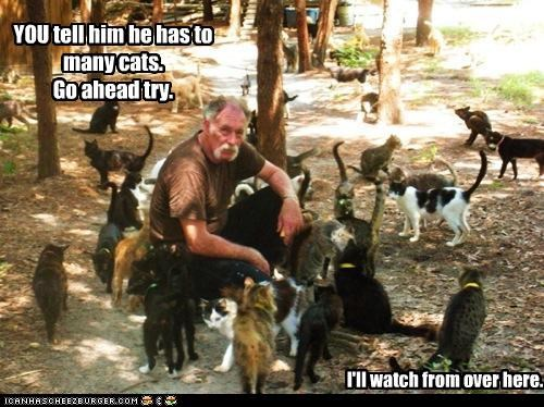 YOU tell him he has to many cats. Go ahead try. I'll watch from over here.