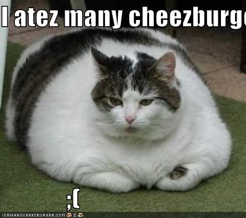 Cheezburger Image 4165146368
