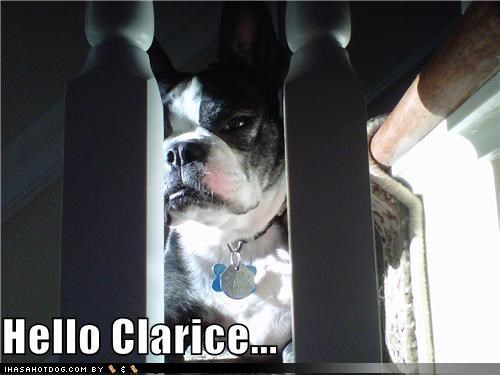 bulldog Clarice famous Hall of Fame hello Movie ominous phrase quote silence of the lambs stairs - 4167079680