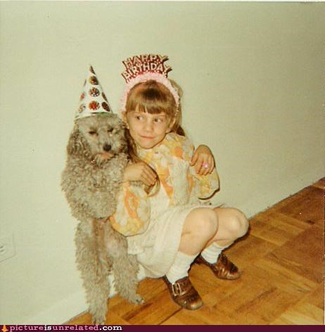 little girl grouching next to curly grey dog standing on its hind legs both wearing happy birthday party hats happy birthday meme