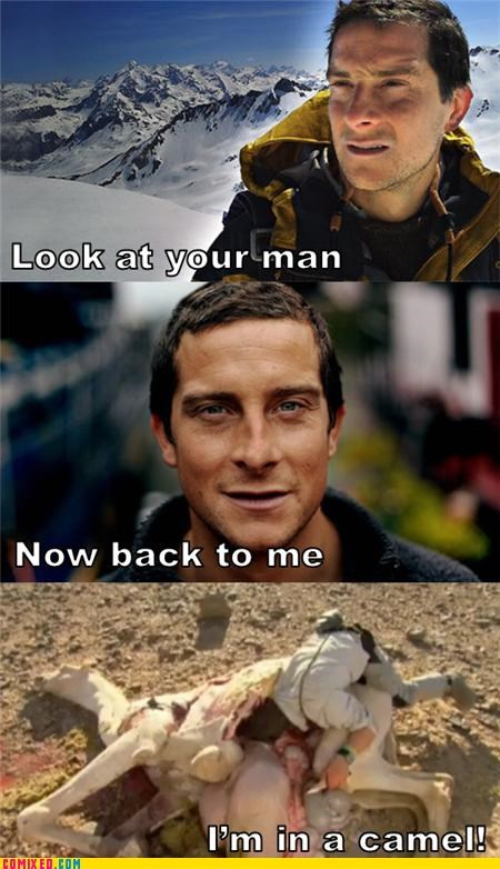 bear grylls,camel,Hoth,look at your man,old spice,survival,TV