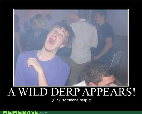 derp derpalicious drunks herp a derp Party Pokémon - 4169051392