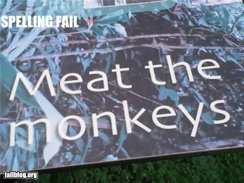 failboat,innuendo,meat,meet,monkeys,signs,spelling
