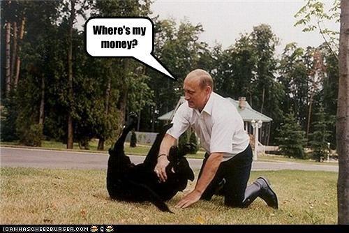 animals dogs funny lolz pets Vladimir Putin vladurday - 4170054144