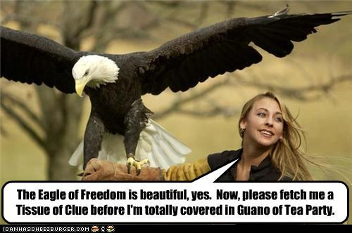 The Eagle of Freedom is beautiful, yes. Now, please fetch me a Tissue of Clue before I'm totally covered in Guano of Tea Party.