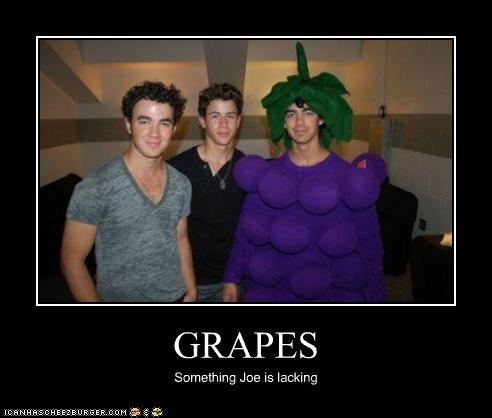 celeb,costume,demotivational,disney,jonas brothers,lolz,Music