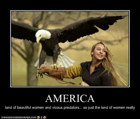 america,animals,demotivational,eagle,funny,lolz