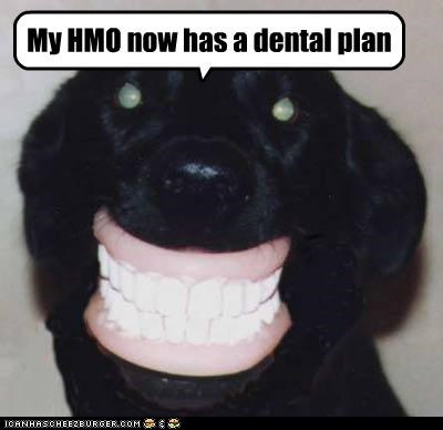 creepy,dental plan,fake teeth,hmo,new,teeth