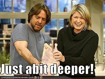 actor,celeb,funny,Martha Stewart,russel crowe