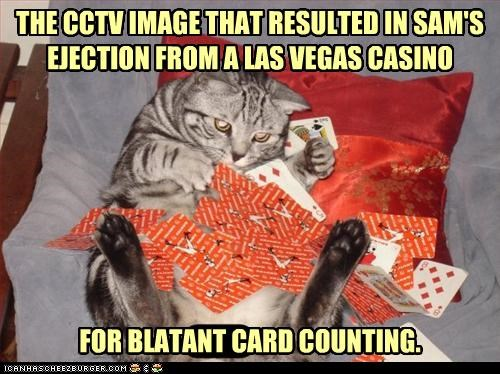 banned caption captioned card counting cards casino cat CCTV cheating ejected evidence gambling image las vegas - 4171144960