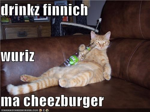 Cheezburger Image 4171229184