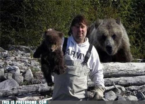 animals army bears photobomb photoshop poll