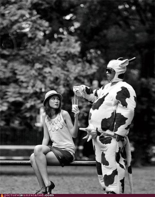 costume cows milk puns wtf - 4171718656