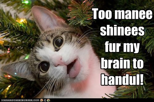 cant-handle-it,caption,captioned,cat,christmas,christmas lights,lights,meowy christmas,overloaded,shinies,shiny,too many