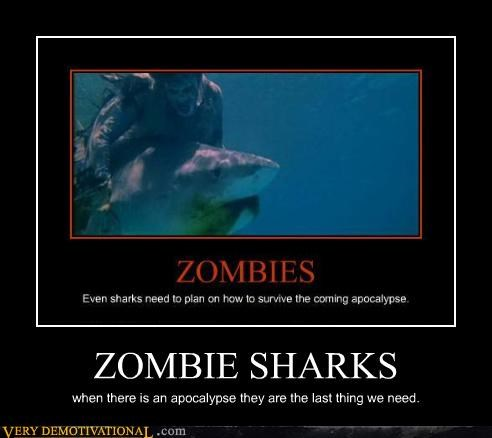 ZOMBIE SHARKS when there is an apocalypse they are the last thing we need.