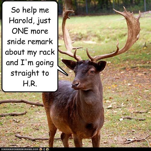 antlers,caption,captioned,deer,rack,remark,snide,so help me,threat,weird