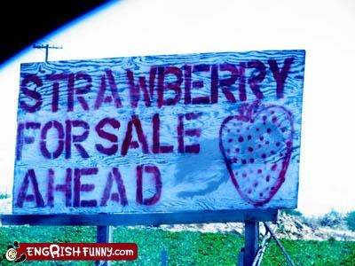 STRAWBERRY FOR SALE