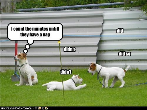 I count the minutes untill they have a nap did didn't did so didn't