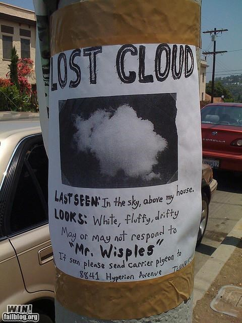 clever lost sign - 4175126272