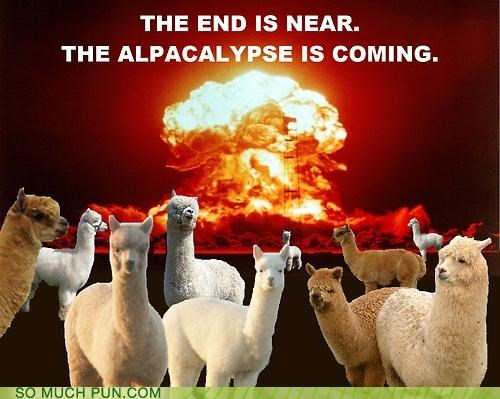 alpaca,apocalypse,famous,neologism,parody,quote,rewrite,t-s-eliot,the hollow men
