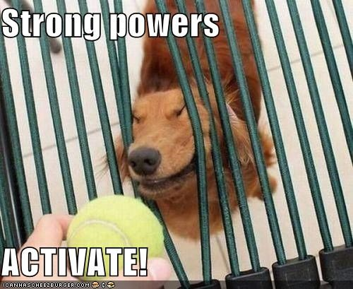 ball,bars,bent,critters,dogs,powers,strong