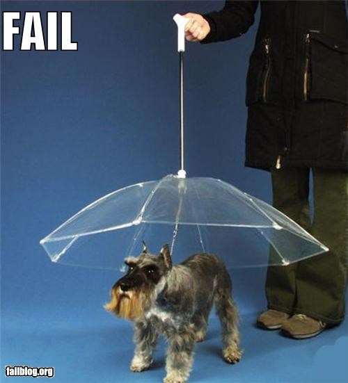 dogs failboat g rated ideas pets products umbrellas - 4175554304