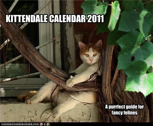 KITTENDALE CALENDAR 2011 A purrfect guide for fancy felines