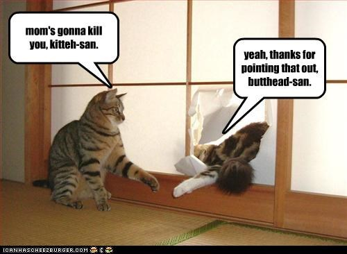 mom's gonna kill you, kitteh-san. yeah, thanks for pointing that out, butthead-san.