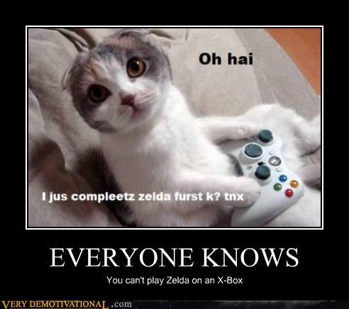 anthropomorphization Cats noobs oh hai Videogames x-box zelda