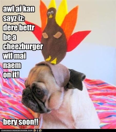 Cheezburger Image 4176725248