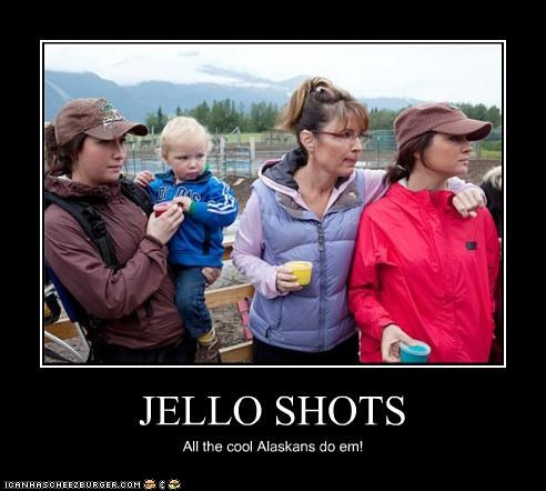 bristol palin funny lolz Sarah Palin - 4177077760