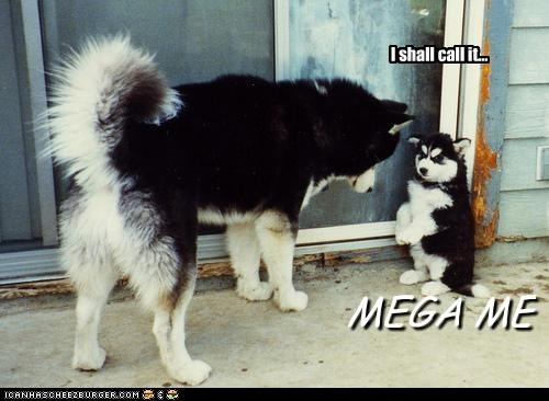 I shall call it... MEGA ME