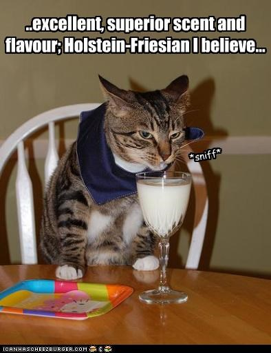 caption,captioned,cat,critic,excellent,flavor,milk,scent,superior,tasting