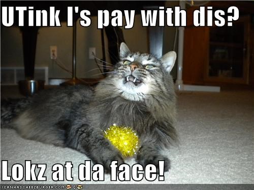 Cheezburger Image 4177725184