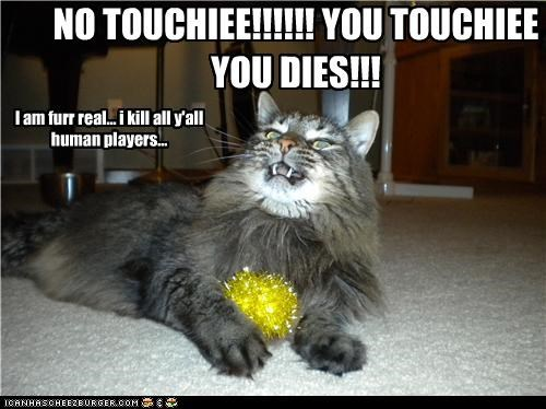 Cheezburger Image 4177827840