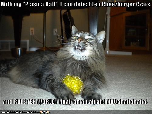 Cheezburger Image 4178021120
