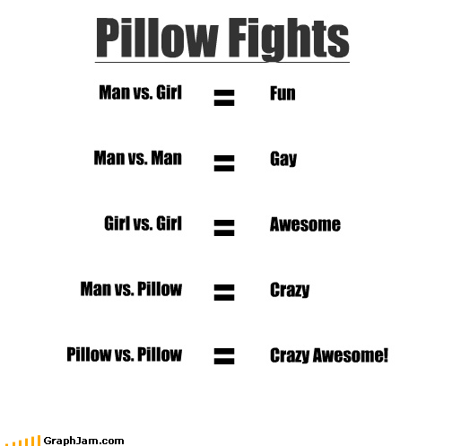 Pillow Fights Man vs. Girl Man vs. Man Girl vs. Girl Man vs. Pillow Pillow vs. Pillow Fun Gay Awesome Crazy Crazy Awesome!